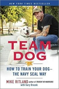 Team-Dog-How-to-Train-Your-Dog-